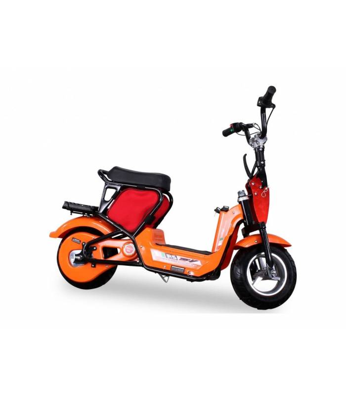 Mini scooter Tmax RCS 350W